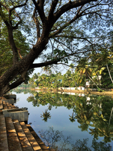 KochiBackwaters